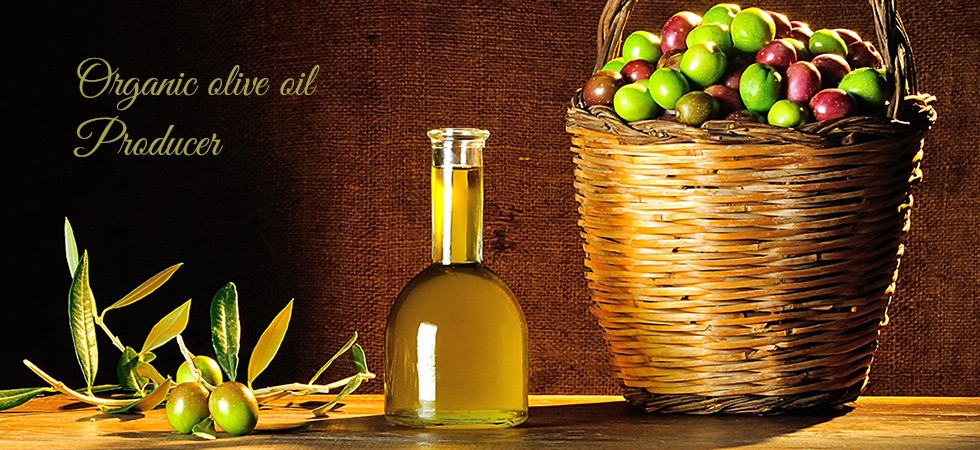 Organic olive oil Producer